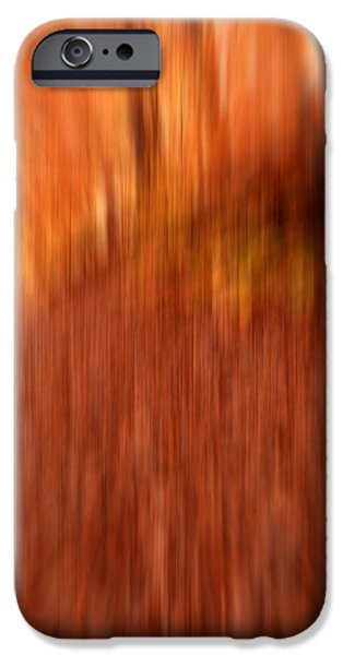 Autumn In New England iPhone Cases - Lost In Autumn iPhone Case by Lourry Legarde