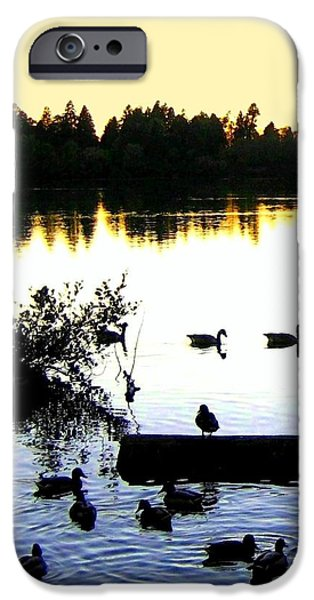 Lost Lagoon At Sundown iPhone Case by Will Borden