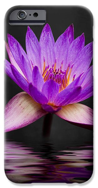 Macro Photographs iPhone Cases - Lotus iPhone Case by Adam Romanowicz