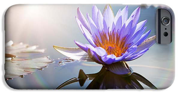 Sun Flare iPhone Cases - Lotus Flower With Sun Flare iPhone Case by Susan  Schmitz