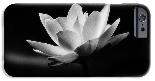 South Louisiana Photographs iPhone Cases - Lotus iPhone Case by Scott Pellegrin