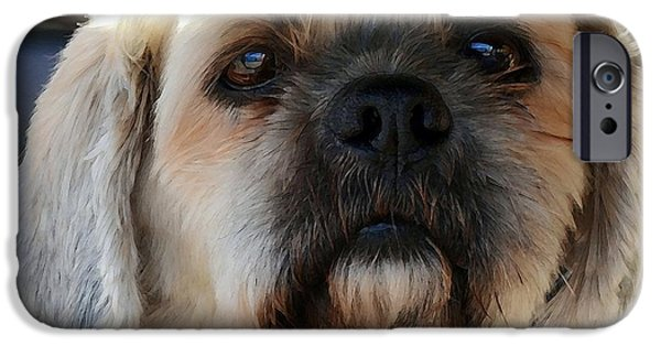 Dog Close-up Digital Art iPhone Cases - Louie iPhone Case by Dale   Ford