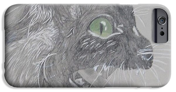 Fury Drawings iPhone Cases - Louis iPhone Case by Kaitlyn Terrell
