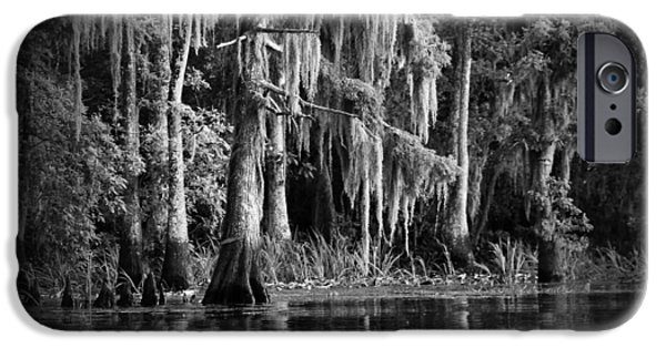 Wetlands iPhone Cases - Louisiana Bayou iPhone Case by Mountain Dreams