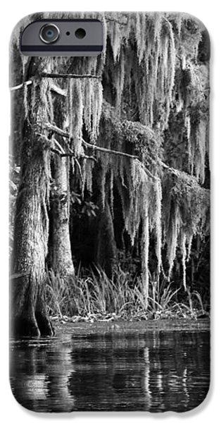 Louisiana Bayou iPhone Case by Mountain Dreams