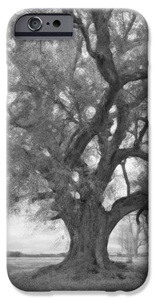 Louisiana Dreamin' monochrome iPhone Case by Steve Harrington