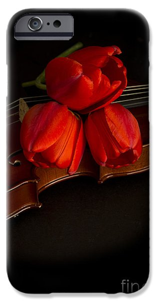 Florals iPhone Cases - Love and Romance iPhone Case by Edward Fielding
