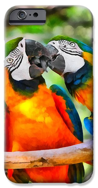 Lovebird iPhone Cases - Love Bites - Parrots in Silver Springs iPhone Case by Christine Till