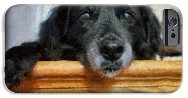 Puppies Digital Art iPhone Cases - Love In A Puppys Eyes iPhone Case by Paulette B Wright