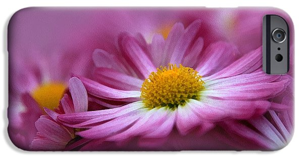 Macro Mixed Media iPhone Cases - Love In Every Petal iPhone Case by Georgiana Romanovna