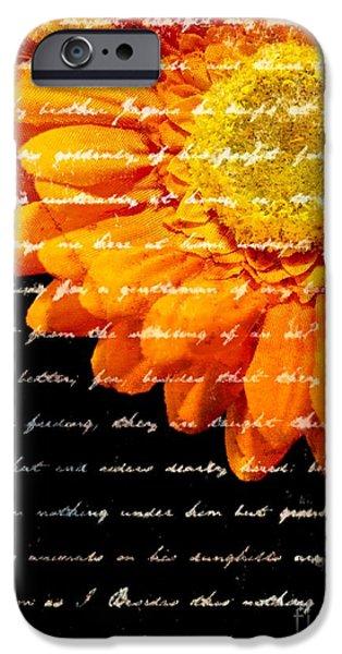 Love Letters iPhone Case by Edward Fielding