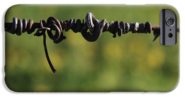 Vineyard In Napa iPhone Cases - Love Lines 4 iPhone Case by Penelope Moore