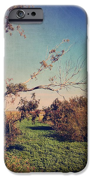 Wetlands iPhone Cases - Love Lives On iPhone Case by Laurie Search