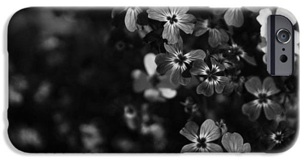 Monotone iPhone Cases - Love Lost iPhone Case by Laurie Search