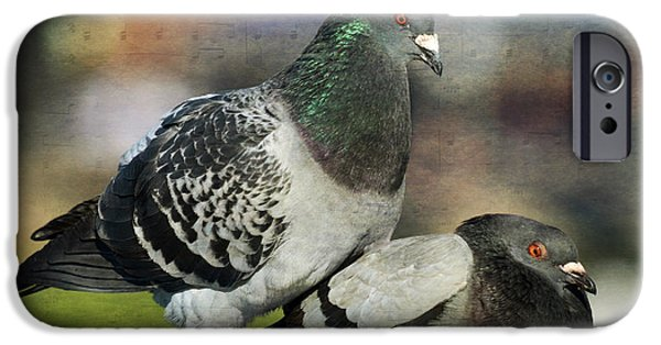 Pigeon iPhone Cases - Love Notes 2 iPhone Case by Fraida Gutovich