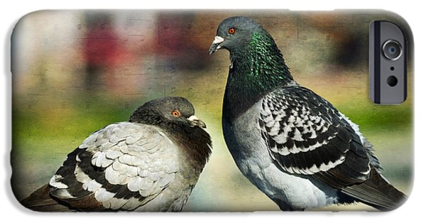 Pigeon iPhone Cases - Love Notes iPhone Case by Fraida Gutovich