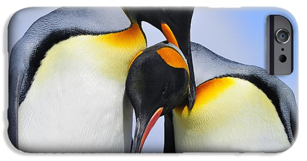 Bonding iPhone Cases - Love iPhone Case by Tony Beck