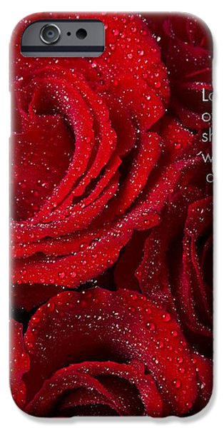 Love Would Never Be a Promise of a Rose Garden iPhone Case by James BO  Insogna