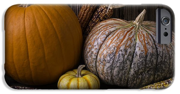 Gourd iPhone Cases - Lovely Autumn Still Life iPhone Case by Garry Gay