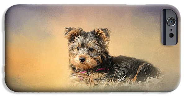 Yorkshire Terrier Art iPhone Cases - Loving the Leaves iPhone Case by Jai Johnson