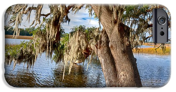 Oak Creek iPhone Cases - Low Country Creek iPhone Case by Walt  Baker