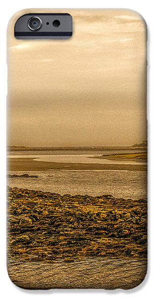 Low Tide Cape Porpoise Maine iPhone Case by Bob Orsillo