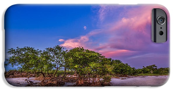 Ocean Sunset iPhone Cases - Low Tide Mangrove iPhone Case by Marvin Spates
