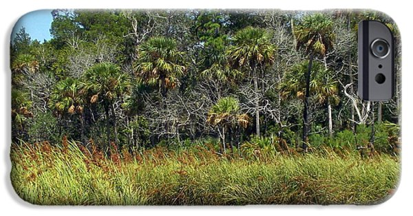 Chiefland iPhone Cases - Lower Suwannee Refuge 2A iPhone Case by Sheri McLeroy