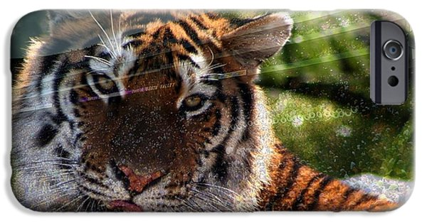 Mike The Tiger iPhone Cases - LSU - Sorry was that your quarterback? iPhone Case by Elizabeth McTaggart