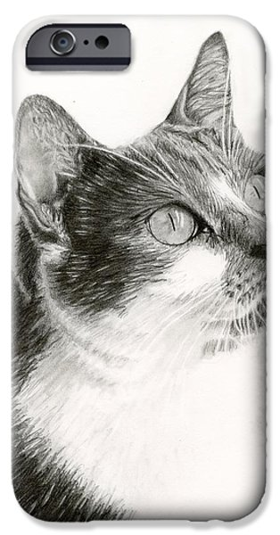 House Pet iPhone Cases - Lucy iPhone Case by Sarah Batalka
