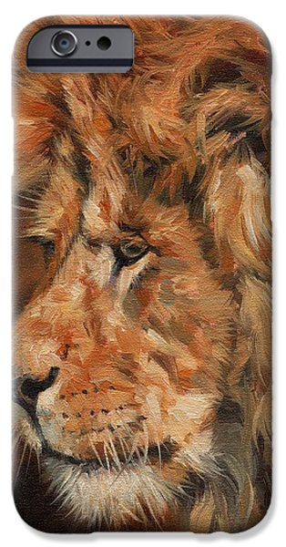 Lion Print iPhone Cases - Luion iPhone Case by David Stribbling