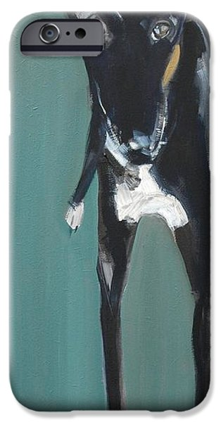 Greyhound iPhone Cases - Lula, 2009 Oil On Board iPhone Case by Sally Muir