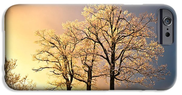 Frigid iPhone Cases - Luminous - Blue Ridge Winter Sunset iPhone Case by Dave Allen