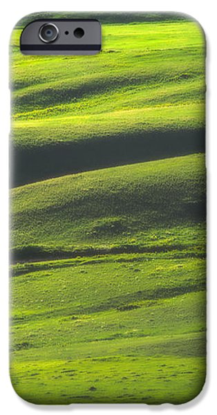 Luminous Green  iPhone Case by Joan Herwig