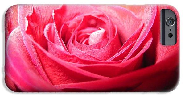 Flora Drawings iPhone Cases - Luminous Pink Rose 3 iPhone Case by Tara  Shalton
