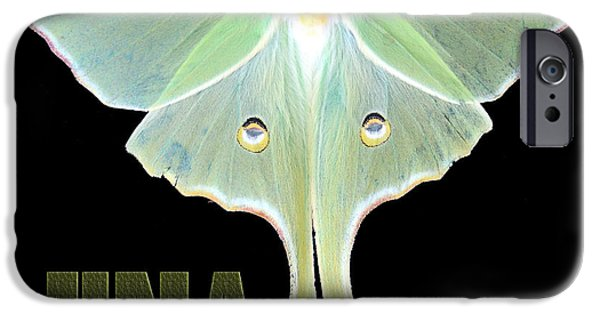 Nature Study iPhone Cases - Luna 1 iPhone Case by Mim White