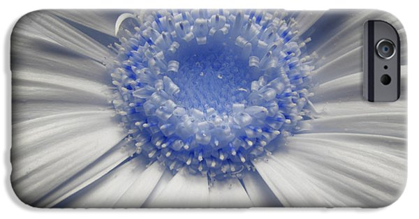 Radiating Light iPhone Cases - Lunar Daisy iPhone Case by Luke Moore