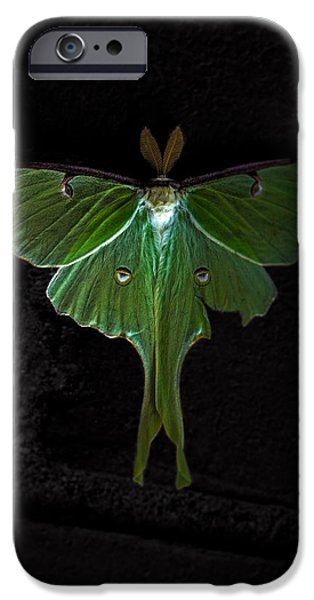 Lunar iPhone Cases - Lunar Moth iPhone Case by Bob Orsillo