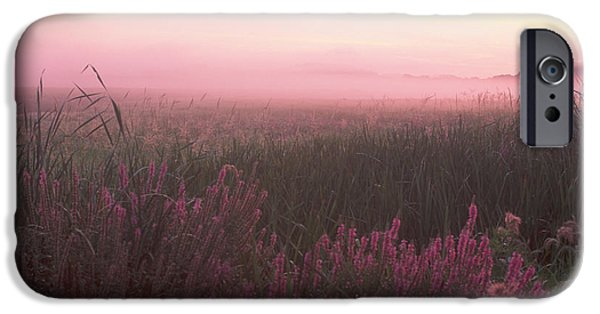 Concord Massachusetts iPhone Cases - Lustrife Sunrise Great Meadows Concord MA iPhone Case by Bucko Productions Photography