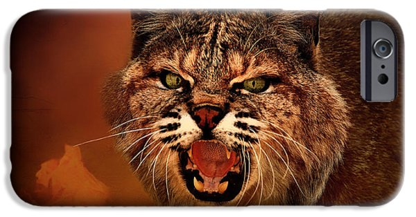 Growling iPhone Cases - Lynx - Up Close and Personal iPhone Case by Mountain Dreams