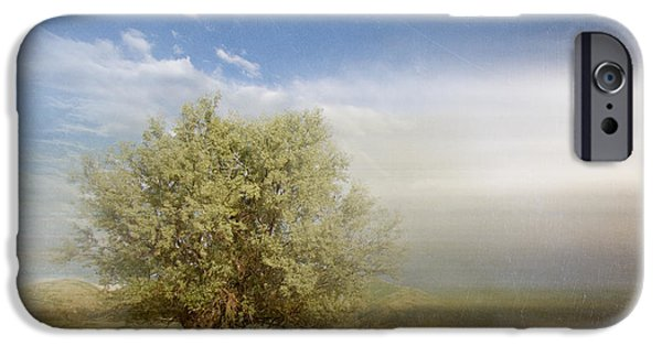 Aimelle Photographs iPhone Cases - Lyrical Tree - 01bt01aa iPhone Case by Variance Collections