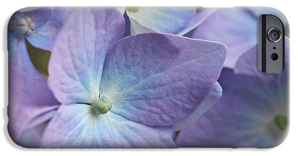 Purple Hydrangeas iPhone Cases - Macro Purple Hydrangea Flowers iPhone Case by Jennie Marie Schell
