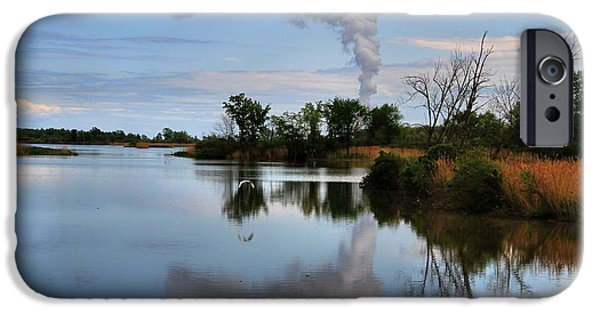Wildlife Disasters iPhone Cases - Magee Marsh Reflection iPhone Case by Dan Sproul