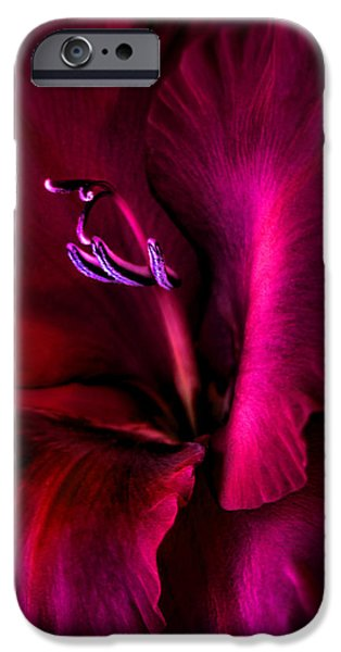 Gladiolas iPhone Cases - Magenta Gladiola Flower iPhone Case by Jennie Marie Schell