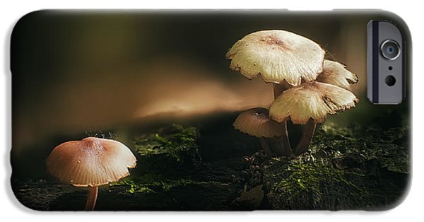 Forest Floor iPhone Cases - Magic Mushrooms iPhone Case by Scott Norris