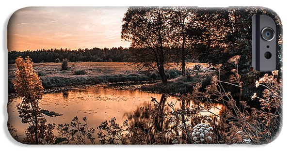 Willow Lake iPhone Cases - Magic of Changes. Nature in Alien Skin iPhone Case by Jenny Rainbow