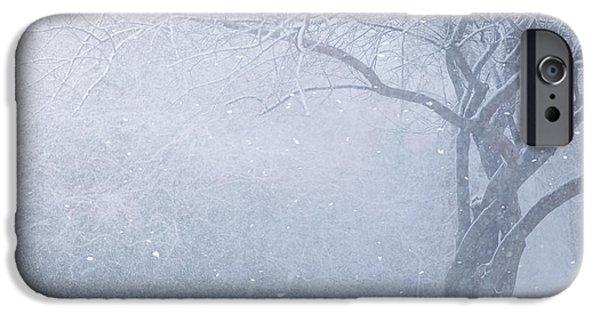 Winter Trees Photographs iPhone Cases - Magic Of The Season iPhone Case by Carrie Ann Grippo-Pike