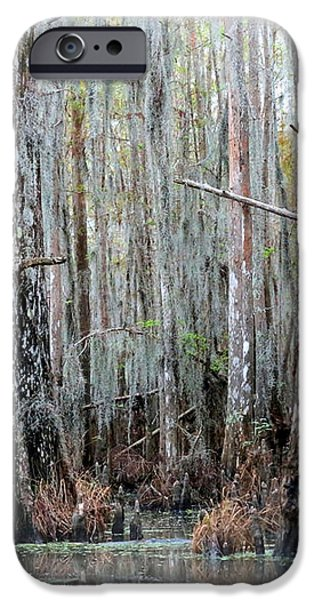 Magical Bayou iPhone Case by Carol Groenen