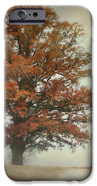 Autumn Scenes Photographs iPhone Cases - Magnificence - Foggy Autumn Scene iPhone Case by Jai Johnson