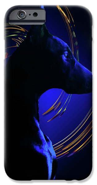 Doberman iPhone Cases - Magnificent Blue iPhone Case by Rita Kay Adams